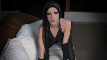 kattycream20's hot webcam show – Transgender on Jasmin