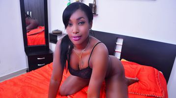 AshleyBrins's heiße Webcam Show – Mädchen auf Jasmin